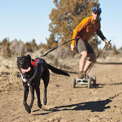 Omnijore - Ruff Wear Hunde-Zuggeschirr zum Skaten & Ski fahren