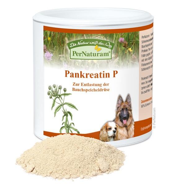 Pankreatin P von PerNaturam für die Bauchspeicheldrüse