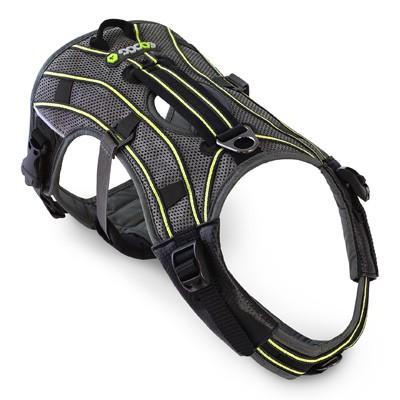 EQDog Pro Harness - vielfach verstellbares Profi-Hundegeschirr
