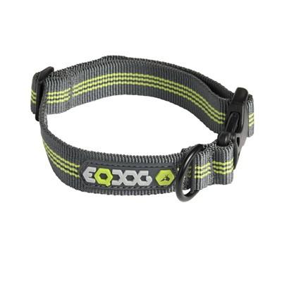 EQDog Classic Collar - robustes Hundehalsband für jedes Wetter