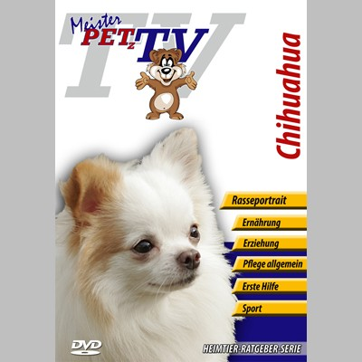 Chihuahua Hunderasse-Video-Portrait auf DVD