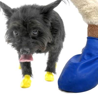 Protex Pawz - wasserfeste Hunde-Schutzschuhe