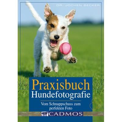 Praxisbuch Hundefotografie vom Schnappschuss zum perfekten Foto