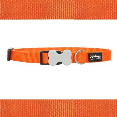 Hundehalsband aus Nylon von Red Dingo in saftigem Orange