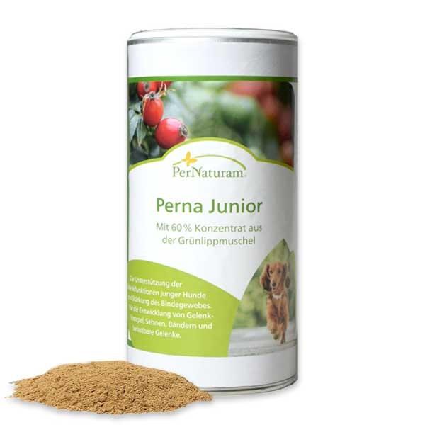 Perna Junior von Per Naturam für die Gelenke junger Hunde