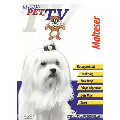 Malteser - Hunde-Portrait-DVD von Meister Petz TV