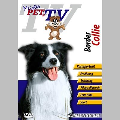 Border Collie Hunderasse-Video-Portrait auf DVD