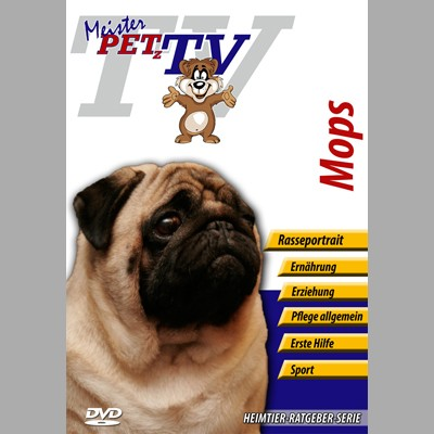 Mops Hunderasse-Video-Portrait auf DVD