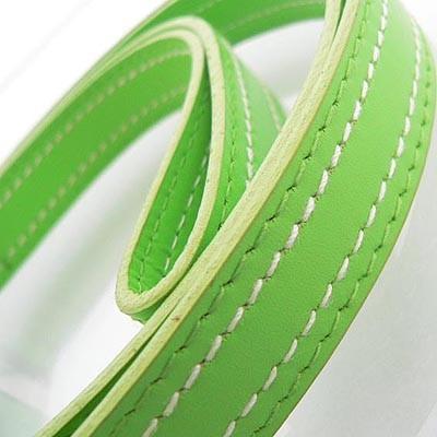 Grüne exklusive Hundeleinen Martingale Green von Hamish McBeth