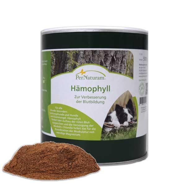 Hämophyll fördert die Blutbildung und Vitalisierung der Zellen von PerNaturam