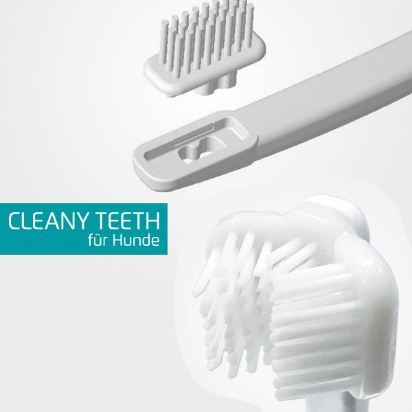 Bürstenkopf für die Cleany Teeth Ultraschall-Zahnbürste von Techmira