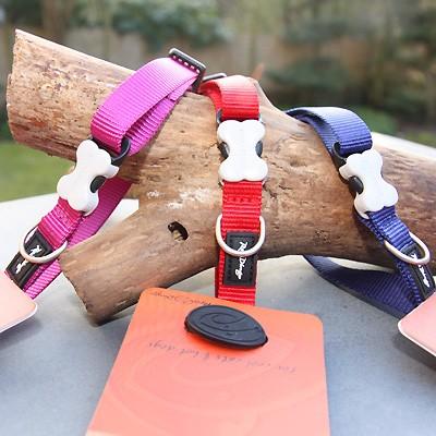 Einfarbige Nylon-Halsbänder vom Cult-Label Red Dingo