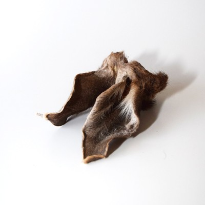 Reh-Fellohren - Der wilde Feinschmecker-Snack für Hunde