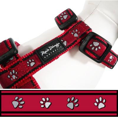 Hundegeschirr Pawprints Red. Von Red Dingo