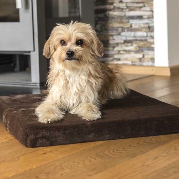 VitaMedog Hundebox-Matratze und Liegeplatz von TrendPet