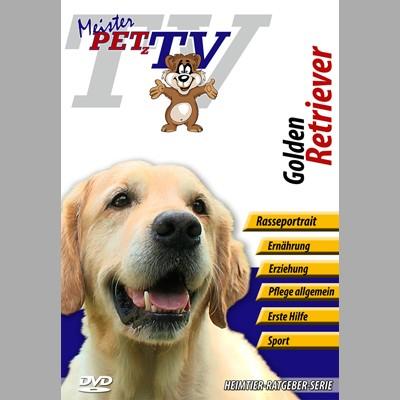 Golden Retriever Hunderasse-Video-Portrait auf DVD