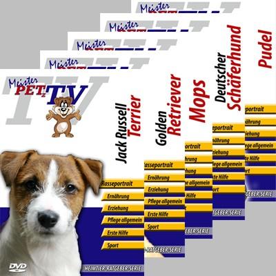 Video-Portraits vieler Hunderassen auf DVD von Meister Petz TV