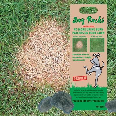 Dog Rocks Natur-Steine gegen Hunde-Pinkelflecken im Rasen
