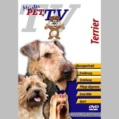Terrier Hunderassen-Video-Portrait auf DVD
