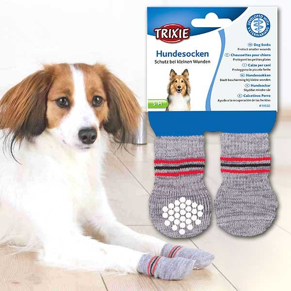 Weiche Anti-Rutsch-Stopper-Hundesocken von Trixie als Pfotenschutz