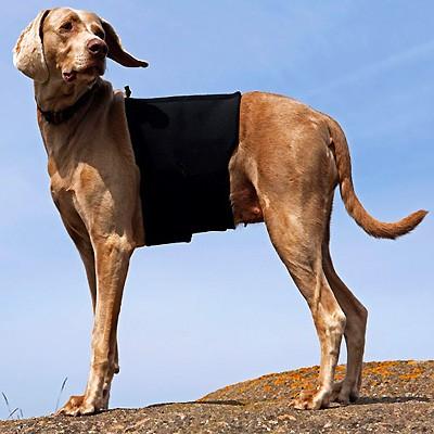 Rückenschoner mit Keramik-Anteil für Hunde von Back on Track