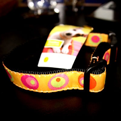 Heiteres oranges Funky Circle-Hundehalsband von Up Country