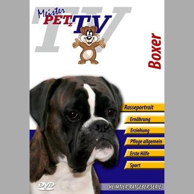 Deutscher Boxer Hunderasse-Video-Portrait auf DVD