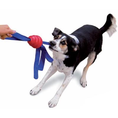 Tolles stabiles Hundespielzeug Kong Tails zum Werfen und Zerren