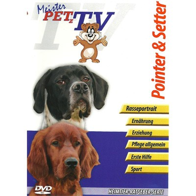 Pointer & Setter- zwei Hunde-Portraits auf DVD